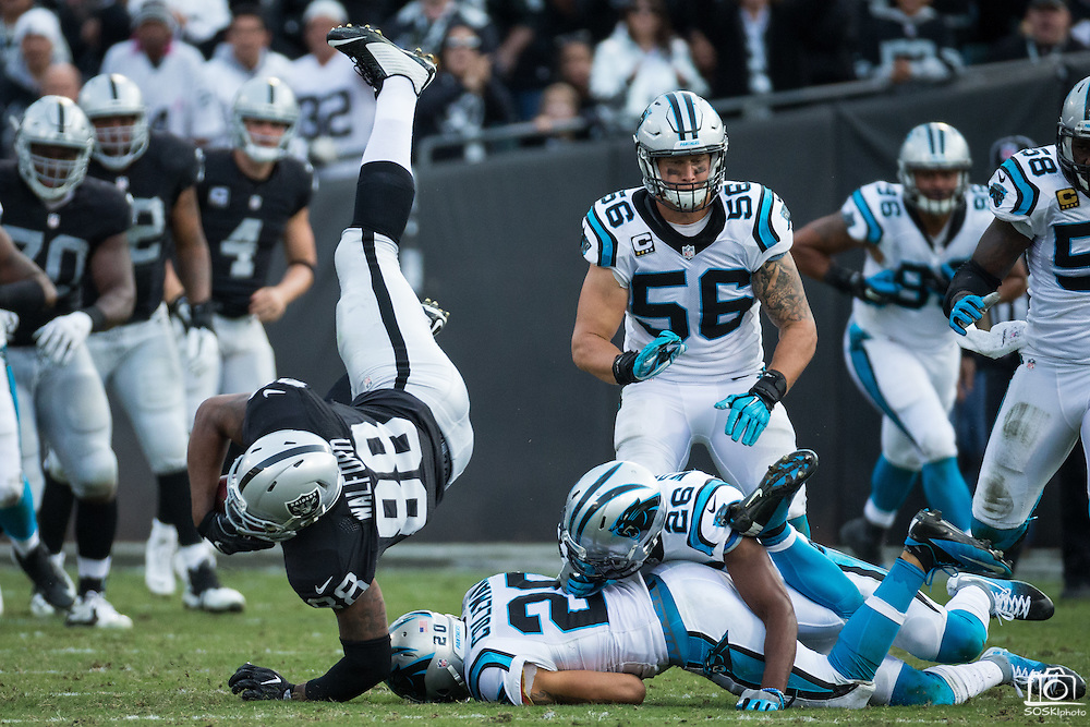 Oakland Raiders tight end Clive Walford (88) goes airborne during a reception against the Carolina Panthers at Oakland Coliseum in Oakland, Calif., on November 27, 2016. (Stan Olszewski/Special to S.F. Examiner)