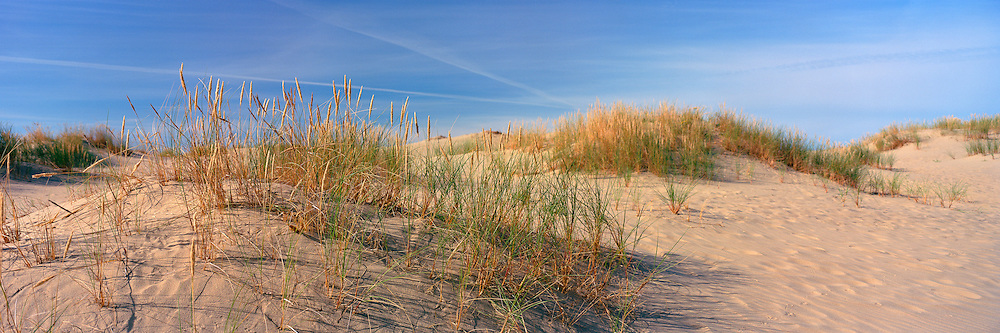 Panoramic and intimate view of the Nida Dunes, Lithuania