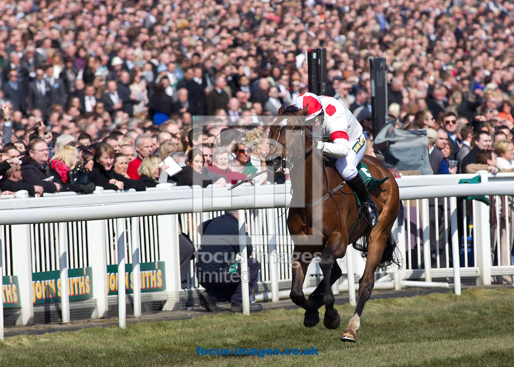 Picture by Michael Sedgwick/Focus Images Ltd +44 7900 363072.06/04/2013.War Singer ridden by Tony Dobbin wins The John Smith's Aintree Legends Charity Race which opens the John Smith's Grand National Day, at Aintree Racecourse, Aintree.