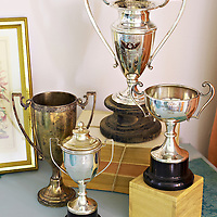 Guest bedroom makeover, collection of vintage silver trophies