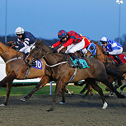 Kempton 28th January