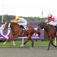 Kempton 19th September 2012