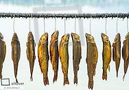geraeucherte Fische