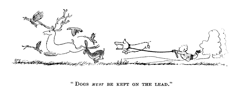 """Dogs MUST be kept on a lead."""