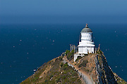 Lighthouse at Nugget Point, near the southern tip of the South Island, New Zealand.