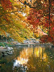 Brilliant fall color both frames and reflects in the Lower Duck Pond, Lithia Park, Ashland, Oregon.