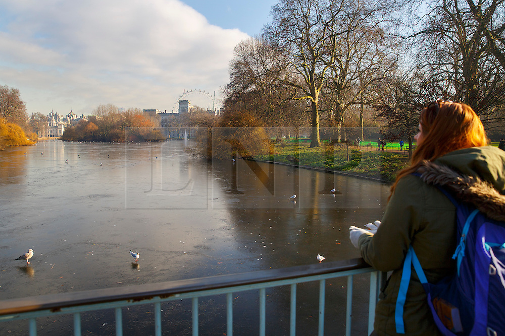 © Licensed to London News Pictures. 20/01/2016. London, UK. St James's Park lake in central London covered in a layer of ice after temperatures in the capital dropped as low as -3C on Wednesday, 20 January 2016. Photo credit: Tolga Akmen/LNP