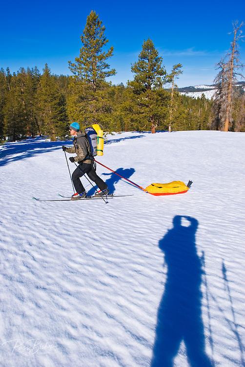 Backcountry skier towing a sled, Yosemite National Park, California