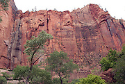 Cliffs in Zion National Park Utah.