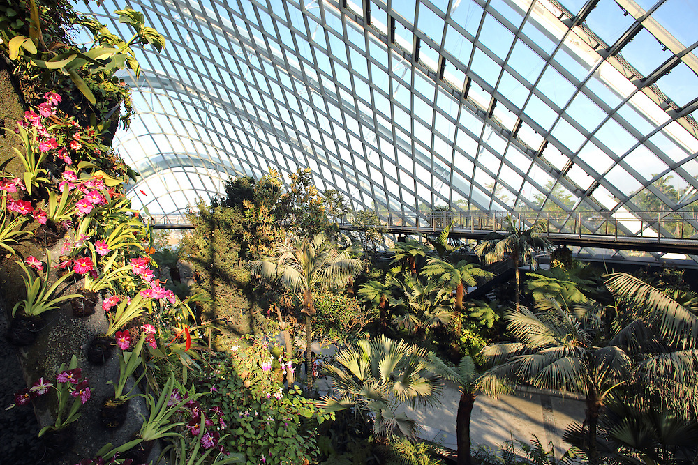 Cloud Forest, the cool-moist conservatory at Gardens By The Bay in Singapore.