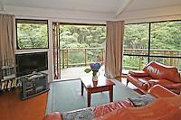 air b & b on the  coromandel peninsula unique accommodation in native bush coromandel photographer