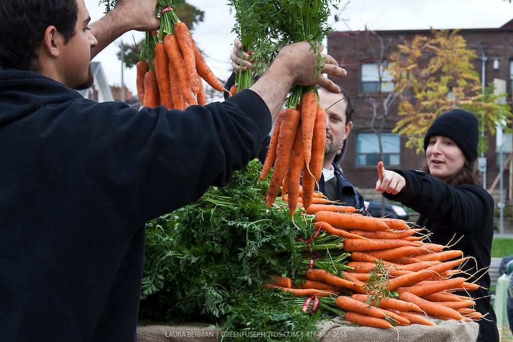 Fresh local produce at a farmers market