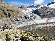 "Pers Glacier flows from Piz Palü (3901 meters or 12,799  feet) into the Morteratsch Glacier (Romansh: Vadret da Morteratsch) in the Bernina massif, in Upper Engadine, Switzerland, the Alps, Europe. A favorite walk is from Morteratsch (second train stop from Pontresina towards Bernina Pass) to Refuge Boval, which has a restaurant and overnight lodging. The trail is well graded, 5 or 6 miles round trip with 2700 feet gain. Return via lower trail for partial loop. The Swiss valley of Engadine translates as the ""garden of the En (or Inn) River"" (Engadin in German, Engiadina in Romansh, Engadina in Italian)."