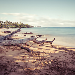 Mōkapu Beach photo in Wailea Makena Maui Hawaii with fallen tree driftwood. Copyright ⓒ 2019 Paul Velgos with All Rights Reserved.