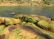 Chattahoochee River, Georgia. Algae covered river rock.