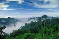 Foggy Central Mountain Range