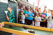 Key West, Florida.  Turtle race at Turtle Kraal restaurant.