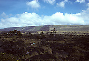 Lava Fields, Hawaii Volcanoes National Park, Maui, Hawaii