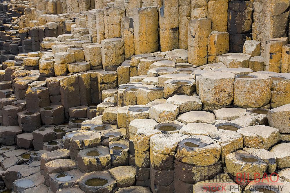 Basalt columns detail. Giant´s Causeway. Northern Ireland, United Kingdom, Europe.