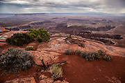 Rain moves across the desert as seen from Grand View Overlook in the Island in the Sky district of Canyonlands National Park in Utah.