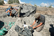Ronan Allain, Head of Conservation of the reptile and bird fossil collections at the Natural History Museum in Paris, at the palaeontological excavations at Angeac, Charente, France (July 2016) © Rudolf Abraham