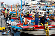 Cuttlefish boats at Jeju Harbor- South Korea
