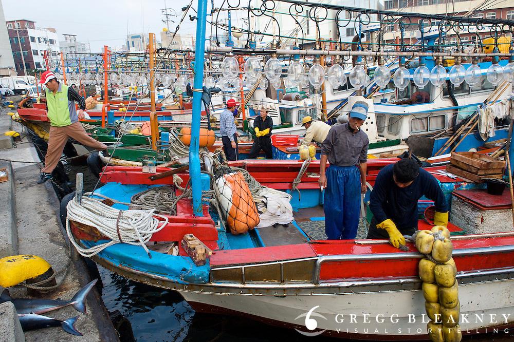 Cuttlefish boats at Jeju Harbor- South Korea