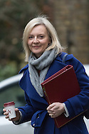 Downing Street, London, February 11th 2016. Environment Food and Rural Affairs Secretary Elizabeth Truss attends the weekly cabinet meeting. <br /> Picture by Paul Davey/Focus Images Ltd +447966 016296<br /> 01/03/2016
