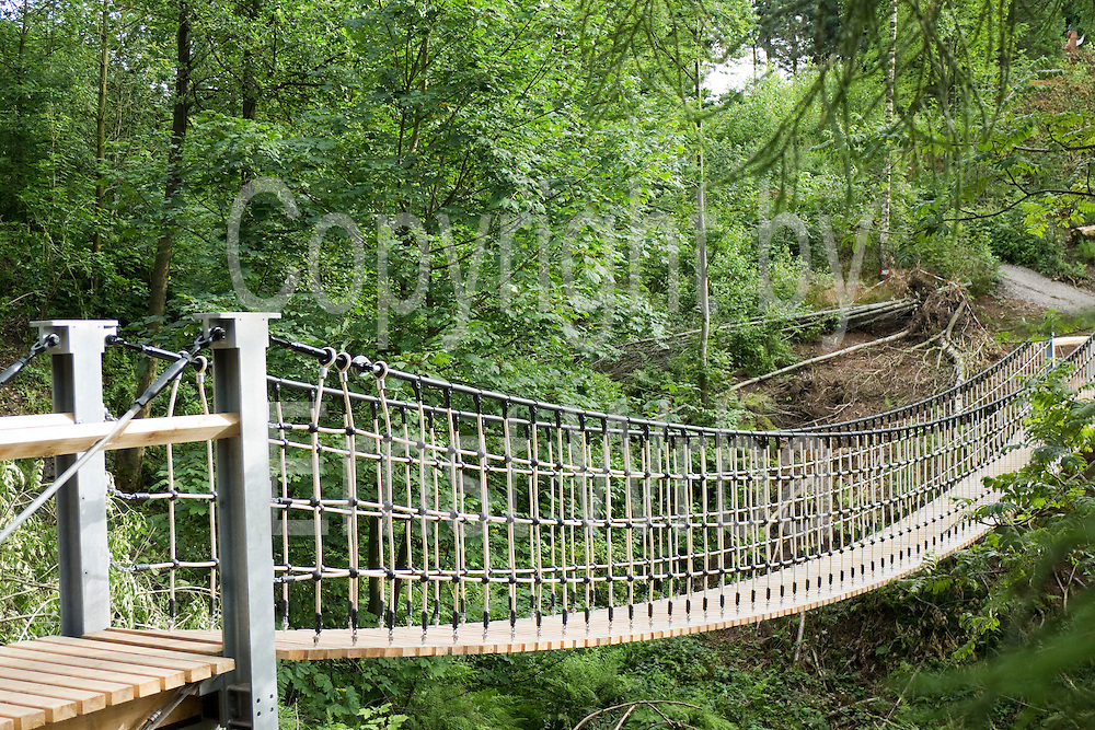 Hängebrücke, Arboretum Weltwald, Bad Grund, Harz, Niedersachsen, Deutschland | hanging bridge, arboretum Weltwald, Bad Grund, Harz, Lower Saxony, Germany