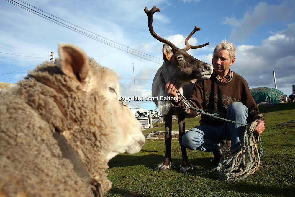 Mike Butcher with his pet rain deer and a sheep in his front yard in Stanley, the capital of the Falkland Islands, on Wednesday, March 21, 2007. (Photo/Scott Dalton)