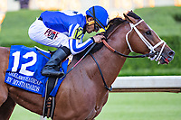 HOT SPRINGS, AR - MAY 02:  Jockey Gabriel Saez rides #12 By My Standards to the win during The Oaklawn Handicap at Oaklawn Racing Casino Resort on Derby Day during the Covid-19 Pandemic on May 2, 2020 in Hot Springs, Arkansas. (Photo by Wesley Hitt/Getty Images)