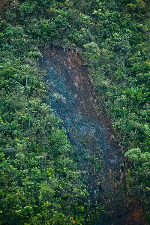 Nova Lima_MG, Brasil...Estacao Ecologica Mata dos Fechos...The Ecological Station Mata dos Fechos...Foto: JOAO MARCOS ROSA / NITRO.