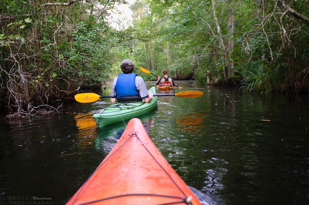 Kayaks on the Alligator River in eastern North Carolina, USA, part of the Alligator River National Wildlife Refuge.
