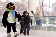 Here's some of what we saw during a session with mascot Parker the Penguin on the ice at the RiverScape MetroPark in downtown Dayton, Sunday, January 22, 2012.