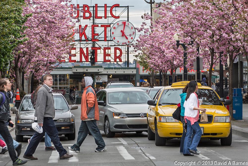 United States, Washington, Seattle, Public Market Center, Cherry trees