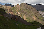 Governor Basin, San Juan Mountains, Mountain Top Mine