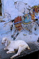 Inde - Rajasthan - Udaïpur - Peinture murale -