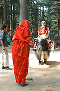 India, Manali, Kullu District, Himachal Pradesh, Northern India, The Hadimba devi temple or Dhoongri temple, A wooden Pagoda style architecture, local tourists riding a yak in traditional clothes