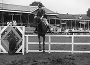 "07/08/1980<br /> 08/07/1980<br /> 07 August 1980<br /> R.D.S. Horse Show: John Player Top Score Competition, Ballsbridge, Dublin. Captain Eddie Mullins (Ireland) on ""Ashbourne""."
