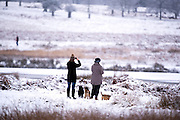 © Licensed to London News Pictures. 03/02/2015. Richmond, UK. People enjoy the snow.  Deer in snow in Richmond Park, South West London today 3rd February 2015. Snow fell across the London area overnight . Photo credit : Stephen Simpson/LNP