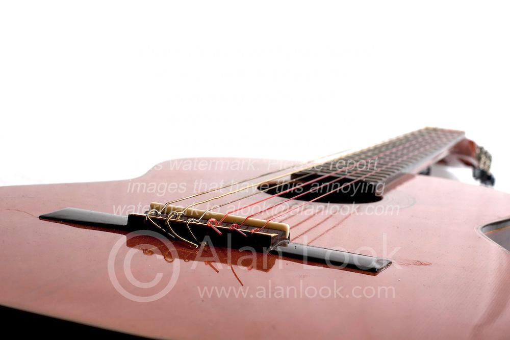 19 February 2012:   Close up shots of an acoustic Alvarez guitar, no pic guard