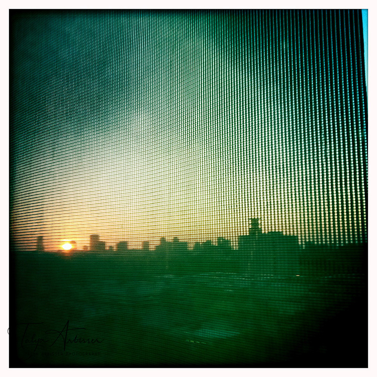 Skyline through a screen - Houston, Texas