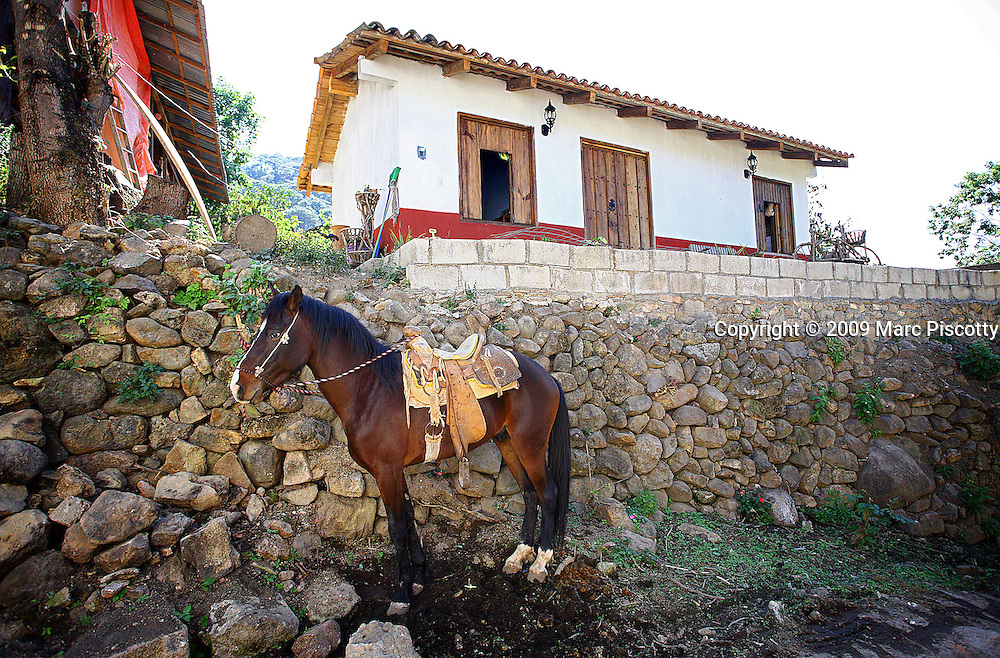 SHOT 2/16/09 3:11:33 PM - A horse tied up outside a home in San Sebastián del Oeste, Mexico. Many locals still use horses as a main form of transportation in the colonial town. The town was founded as a mining town in 1605 during the Spanish colonial period. Gold, silver and lead were mined around the area. More than 25 mines and a number of foundries had been established by 1785. The town was declared a city in 1812 and reached a peak population of some 20,000 people by 1900. The prosperity of the city declined after the revolution of 1910. At the start of the 21st century, it has a population of less than 1,000. It receives some tourist visits from nearby Puerto Vallarta, as it is served by an airfield and recent road improvements have cut the transit time by car from Puerto Vallarta to less than 2 hours. (Photo by Marc Piscotty / © 2009)