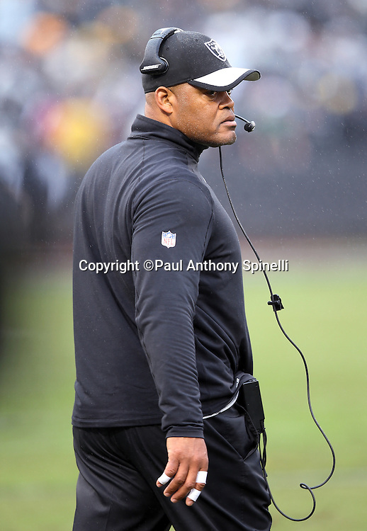 Oakland Raiders defensive coordinator Ken Norton Jr. looks on from the sideline during the 2015 week 15 regular season NFL football game against the Green Bay Packers on Sunday, Dec. 20, 2015 in Oakland, Calif. The Packers won the game 30-20. (©Paul Anthony Spinelli)