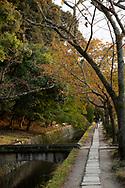 A stone path running beside a canal on Philosopher's Walk (Tetsugakku-No-Michi) in Kyoto, Japan