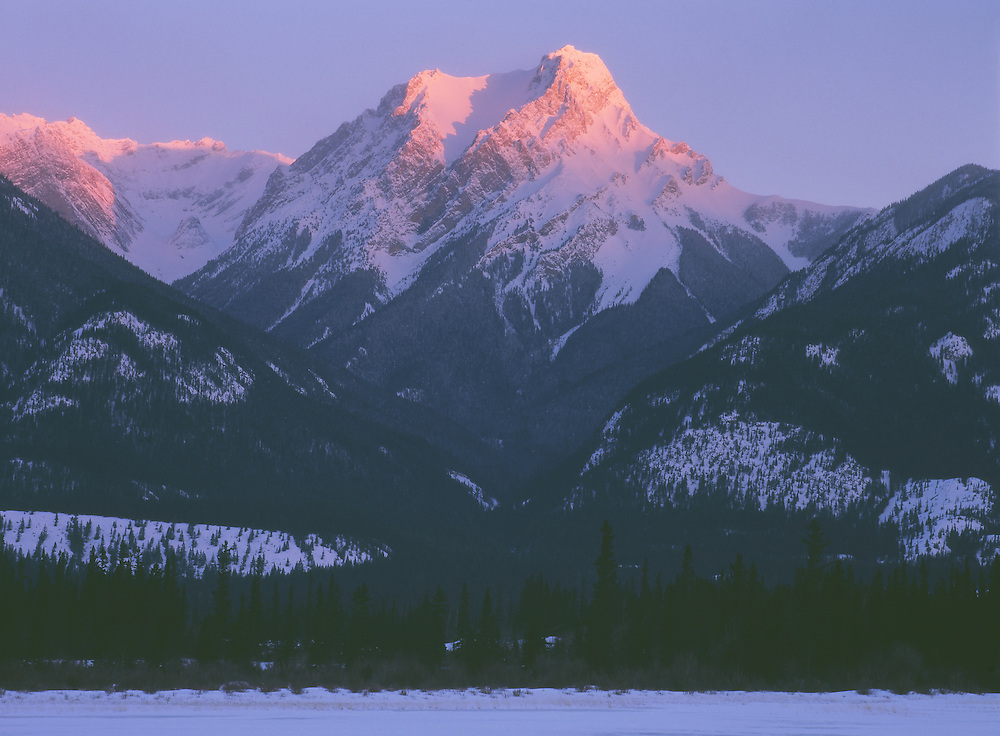 Alpine glow on Gargoyle Mountain in mid-winter in Jasper National Park, Alberta, Canada. Morning.