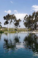 Gwen Moore Lake, Kenneth Hahn State Recreation Area, California