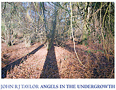 Angels in The Undergrowth (available as a signed hardback book from amazon or any good bookstore)