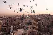 The Twice Refugees of Shatila