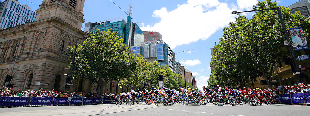 2015 Santos Tour Down Under. Adelaide. Australia.Sunday 25.1.2015. Stage 6. Adelaide Street Circuit.90km<br /> &copy; ATP / Damir IVKA<br />  - Tour Down Under Australia 2015, Cycling, road race, Radrennen, Australien -  Radsport - Rad Rennen -<br /> - fee liable image: copyright &copy; ATP - IVKA Damir